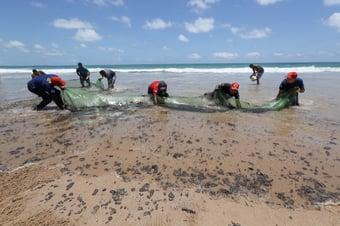 IMAGEM: Maioria das praias atingidas por óleo já está limpa, diz ministro do Turismo