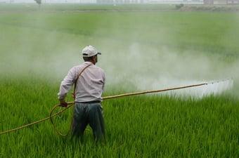 IMAGEM: STF tem 4 votos para derrubar portaria que facilita registro de agrotóxicos