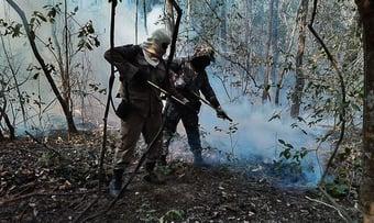 IMAGEM: Força Nacional vai combater queimadas no Pantanal no MS