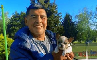 IMAGEM: Maradona e a confiança em Putin