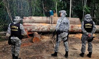 IMAGEM: Força Nacional se junta à Operação Verde Brasil 2