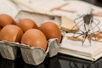 IMAGEM: Ministra da Agricultura diz que preço do ovo deve aumentar