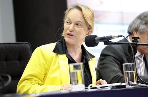 URGENTE: deputada do PL assume relatoria do caso Silveira no lugar de tucano
