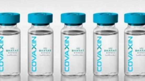Vacina indiana é eficaz contra variante brasileira do coronavírus, diz estudo