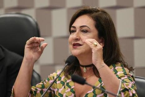 A sugestão de Kátia Abreu para Paulo Guedes