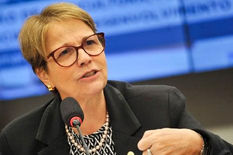 Brasil importará arroz dos EUA e da Tailândia, diz Tereza Cristina