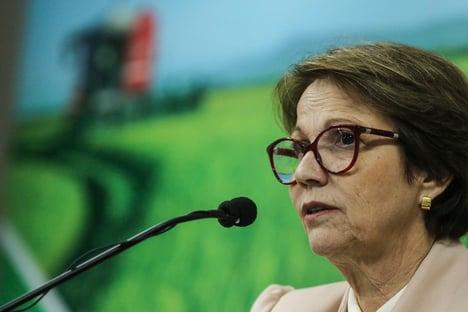 """Tereza Cristina, sobre notificar empresas por preços altos: """"Não era parte da nossa estratégia"""""""