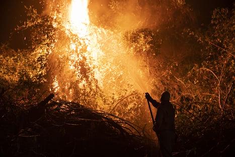 Governo libera R$ 3,8 milhões para ajuda emergencial no Pantanal