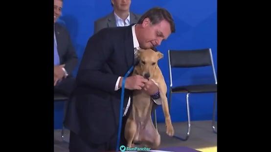 Vídeo: a cachorrada de Bolsonaro