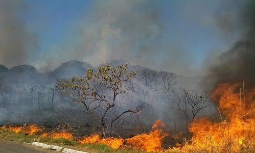 Em 15 dias, Amazônia tem mais fogo que outubro de 2018 e 2019