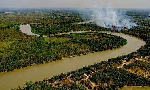 Fogo no Pantanal do MT começou em fazendas de fornecedores de JBS, Marfrig e Minerva, diz ONG