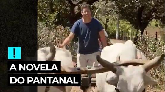 Vídeo: a novela do Pantanal